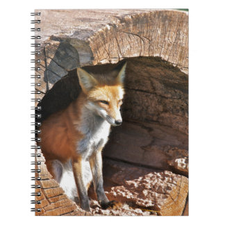 Cubby hole notebook