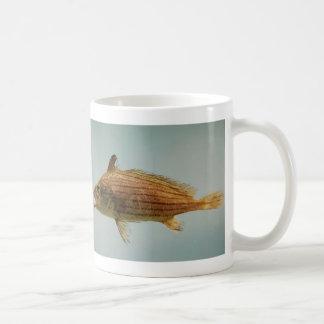 Cubbyu Fish Classic White Coffee Mug