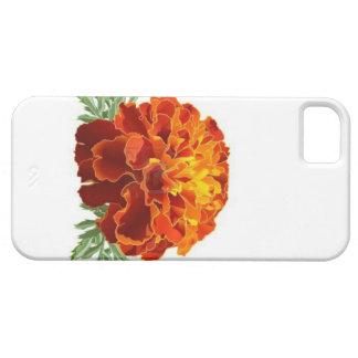 Cubierta adaptable del iPhone de la maravilla iPhone 5 Protectores