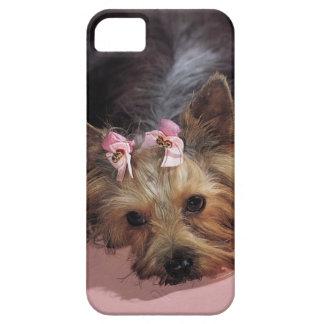 Cubierta adorable del iPhone 5 del perro del KRW iPhone 5 Carcasa