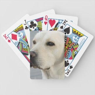 Cubierta amarilla del laboratorio de tarjetas barajas de cartas