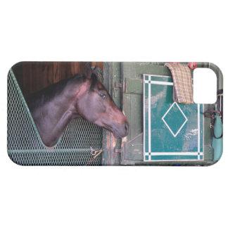Cubierta apilada iPhone 5 carcasa