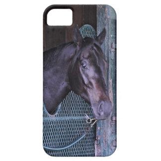 Cubierta apilada iPhone 5 Case-Mate cobertura