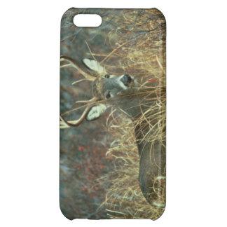 Cubierta Blanco-Atada del iPhone de los ciervos