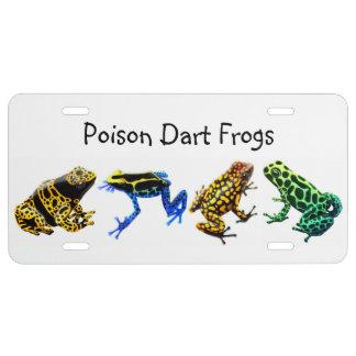 Cubierta colorida de la placa de las ranas del placa de matrícula