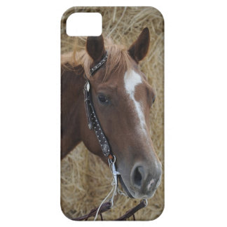 Cubierta cuarta del iPhone del caballo Funda Para iPhone SE/5/5s