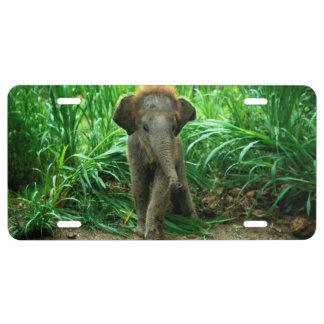 Cubierta de aluminio de la placa del elefante placa de matrícula