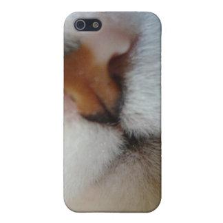 Cubierta de CatLovers Iphone iPhone 5 Carcasa