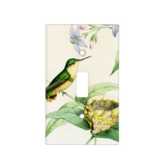 Cubierta de interruptor de la luz de los colibríes placa para interruptor