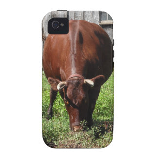 Cubierta de Iphone 4 S de la vaca de Brown Case-Mate iPhone 4 Carcasas