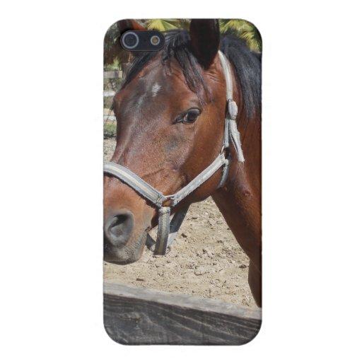 Cubierta de Iphone del caballo iPhone 5 Carcasa