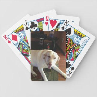 Cubierta de Labrador de tarjetas Baraja De Cartas