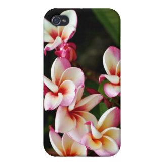 Cubierta de las flores de Iphone iPhone 4 Protectores