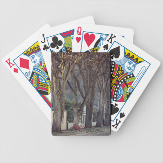 Cubierta de las tarjetas de Arrowtown Baraja