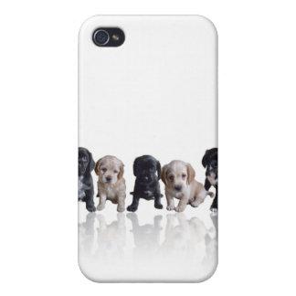 Cubierta de los perritos iPhone4 de cocker spaniel iPhone 4 Carcasas