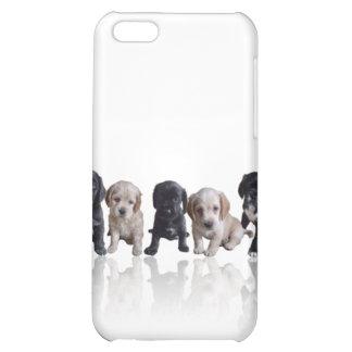 Cubierta de los perritos iPhone4 de cocker spaniel
