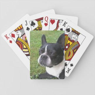 cubierta de naipes, con el terrier de Boston Cartas De Póquer