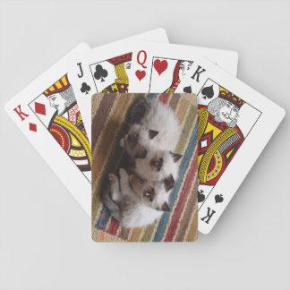 Cubierta de Ragdoll de tarjetas Baraja De Cartas