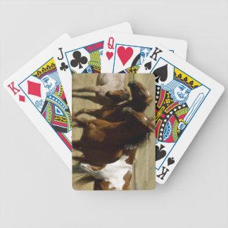 Cubierta del caballo de tarjetas baraja de cartas bicycle