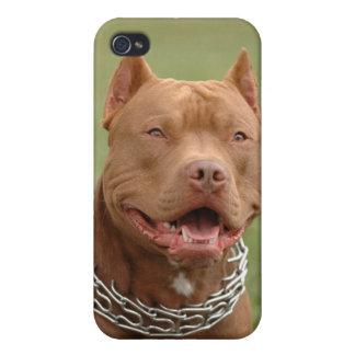 Cubierta del caso del iPhone 4 del perro de perrit iPhone 4 Carcasas
