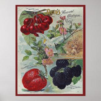 cubierta del catálogo de semilla del vintage póster