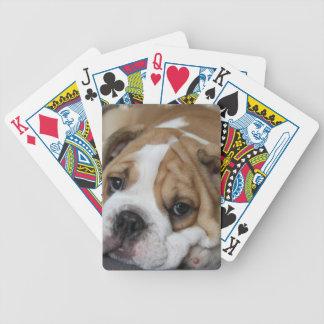 Cubierta del dogo el dormir de tarjetas barajas de cartas