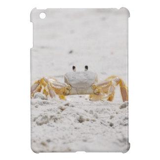 Cubierta del iPad del guardia de la playa mini