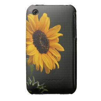 Cubierta del iPhone 3 del girasol Case-Mate iPhone 3 Cárcasa