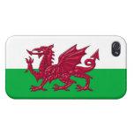 Cubierta del iPhone 4 de la bandera del dragón Gal iPhone 4 Funda