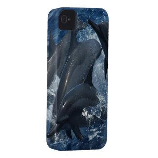 Cubierta del iPhone 4 del delfín iPhone 4 Cárcasa