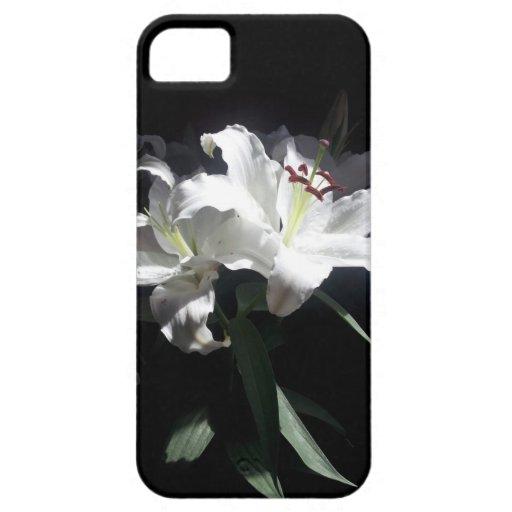 Cubierta del iPhone 5 de los lirios blancos iPhone 5 Protectores