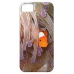 Cubierta del iPhone 5 de los pescados del payaso iPhone 5 Case-Mate Protectores