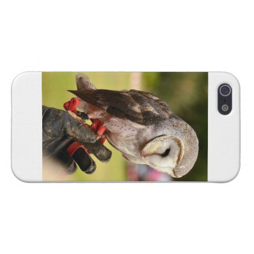 Cubierta del iPhone de la impresión del búho iPhone 5 Cárcasa