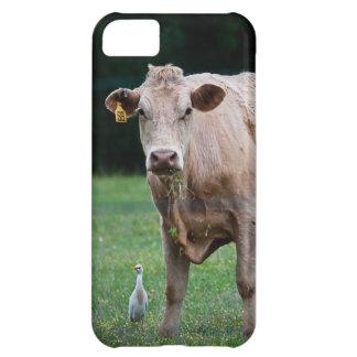 Cubierta del iPhone de la vaca y del Egret Funda iPhone 5C