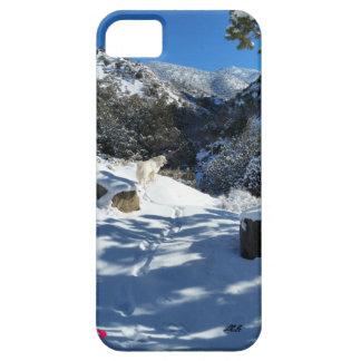 Cubierta del iPhone del rastro de los Pirineos iPhone 5 Carcasa