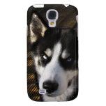 Cubierta del iPhoneG del husky siberiano