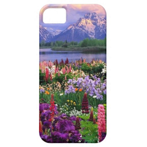 Cubierta del teléfono con paisaje hermoso funda para iPhone SE/5/5s