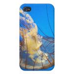 Cubierta del teléfono de las medusas iPhone 4 fundas