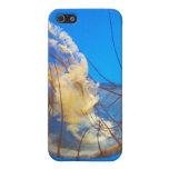 Cubierta del teléfono de las medusas iPhone 5 carcasas