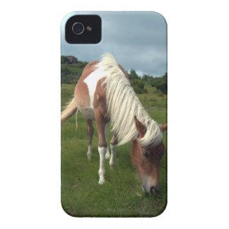Cubierta del teléfono del caballo salvaje iPhone 4 coberturas