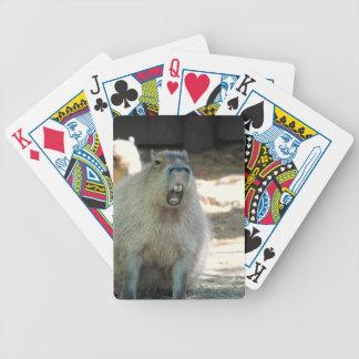 Cubierta divertida del Capybara de tarjetas Barajas