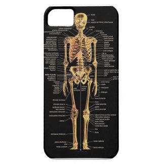 Cubierta esquelética del teléfono iPhone 5 Case-Mate fundas