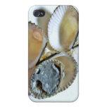 cubierta, fango iPhone 4 protector