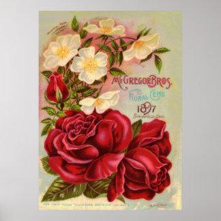 Cubierta floral del catálogo de la flor del impresiones