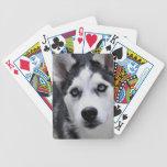 Cubierta fornida del perrito de tarjetas cartas de juego