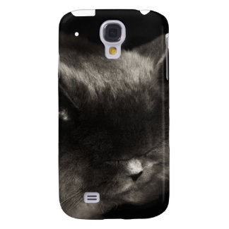 Cubierta gris del gato persa iPhone3G el dormir