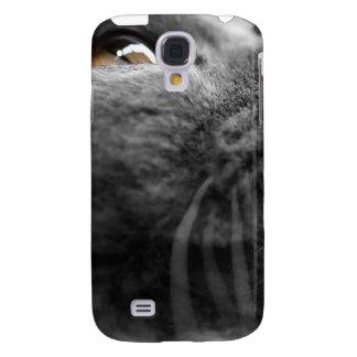 Cubierta gris del primer iPhone3G del gato persa
