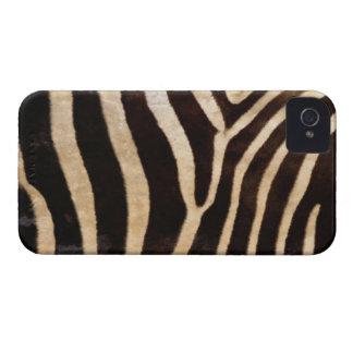 Cubierta intrépida de la caja de Blackberry de la  Case-Mate iPhone 4 Cárcasa