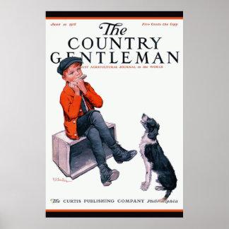 Cubierta joven del caballero de Collie Country del Posters