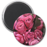 cubierta negra de los rosas iman